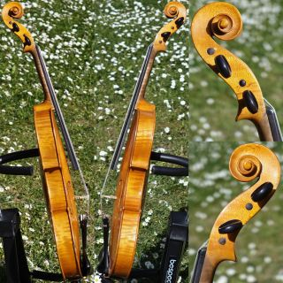 Fine Czech Antique Violin,  Amati Model.  Build & Tone photo