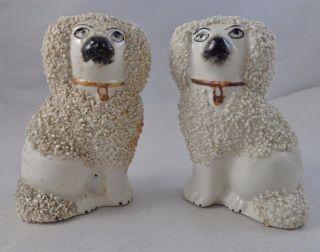 Antique 19th Century Pr Staffordshire Dog Figurines England Signed photo
