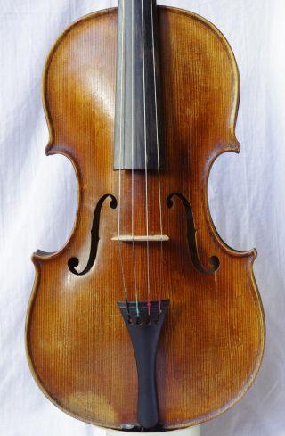 Antique Violin Labelled Alois Leja Wien 1815 photo