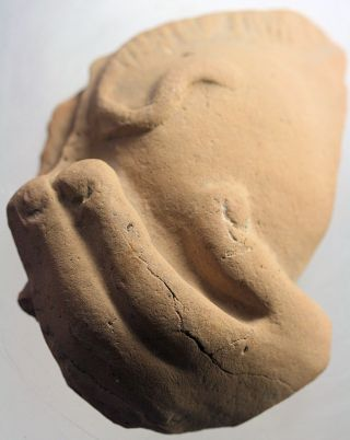 Greek Fragment Of A Hand Holding A Pig,  From A Votive Figure photo