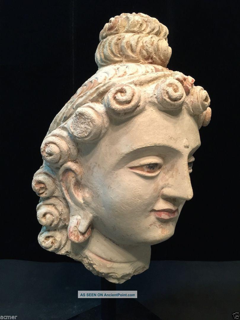 Authentic 5th - 6th Century Large Gandhara Bodhisattva Buddha Head,  Stucco Near Eastern photo