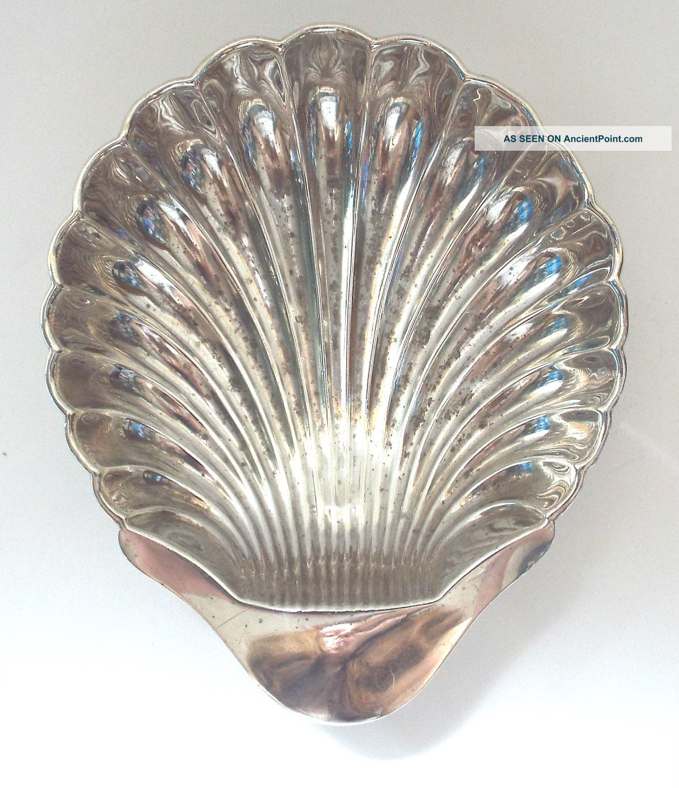 Large Shell Dish Butter Oyster Solid Sterling Silver Rococo Revival Cooper 1914 Dishes & Coasters photo