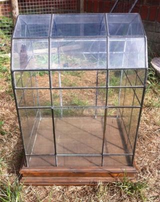 Victorian Greenhouse Style Terrarium,  Clear&stained Glass,  Lead Metal Terrarium photo