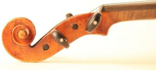 Fine & Old Italian Violin Marchetti 1897 Geige Violon Violino Violine 小提琴 バイオリン photo