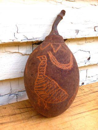 Australian Aboriginal Decorated Boab Nut 3 photo