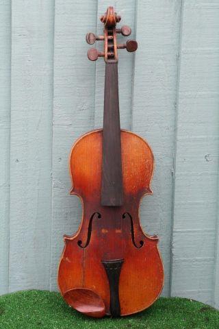 Interesting 19thc Violin With Burr Birds Eye Maple Back Of French Origin C1900 photo