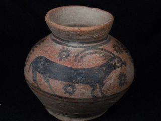 Ancient Teracotta Painted Pot With Animals Indus Valley 2500 Bc Pt15497 photo