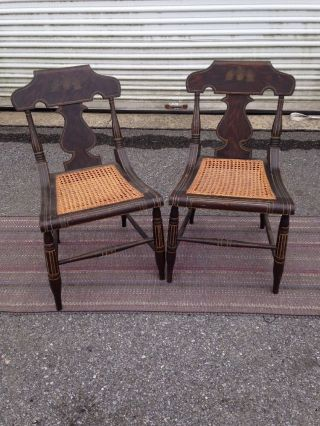 Antique Federal Empire Paint Decorated Side Chairs With Cane Seats 1830s photo