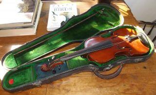 Antique Violin Labled