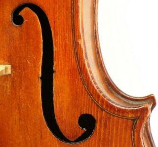 Fine And Antique Italian Violin By Reale Puglisi,  Catania 1920 - photo