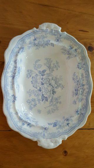 English Ironstone Blue & White Asiatic Pheasant Oval Vegetable Dish photo