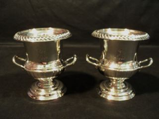 Wonderful Sheffield Silver Plated Miniature Wine Cooler photo