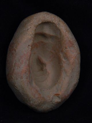 Ancient Teracotta Mold Of Head Indus Valley 1000 Bc Tr15326 photo