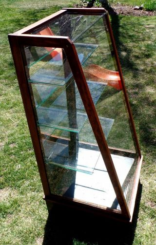 1910 ' S The Waddell Co.  42 Inch Tall Slant Front Glass Display Case photo
