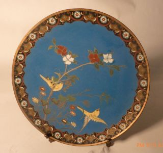 Late 19thc.  Meji Japan Made Turq.  Cloisonne Birds Charger/plate 12
