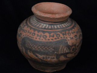 Ancient Teracotta Painted Pot With Lions Indus Valley 2500 Bc Pt15524 photo