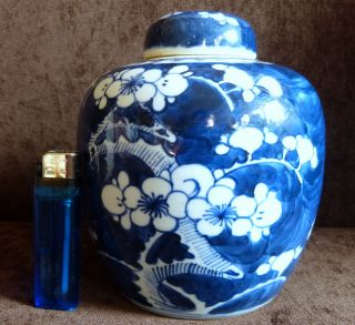 Vintage Chinese Blue White & Porcelain Ceramic Prunus Ginger Jar Vase photo