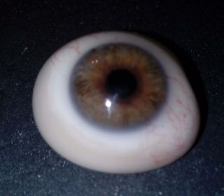 Antigue Pre - Wwii German Large Medical Human Prosthetic Glass Eye Brown Iris photo