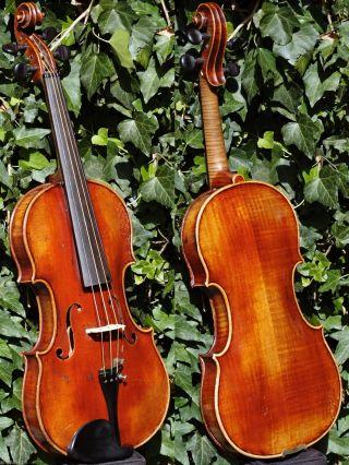 Fine Antique Czech Violin - B.  Dousa,  Budvicii,  1921.  Wonderful Build & Sound photo