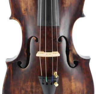 Fine,  Rare - Italian,  Antique Labeled 4/4 Old Violin photo