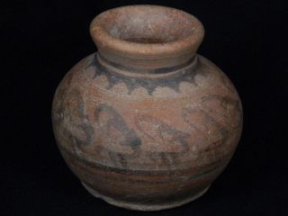 Ancient Teracotta Painted Pot With Animals Indus Valley 2500 Bc Pt15467 photo