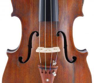 Antique,  Georg Krywalsky,  Old Labeled 4/4 Master Viola photo