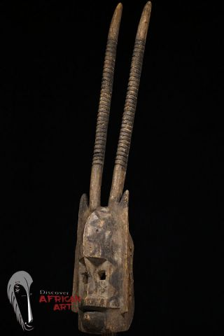 """Discover African Art Uncommon - Style 39.  5"""" Dogon Zoomorphic Mask photo"""