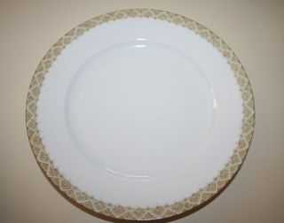 Antique Rare Pattern Dinner Plate Mz Austria Circa 1890 ' S White Gold Trim 9 1/2