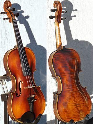 Fine Vintage Czech Violin By Ladislav F.  Prokop,  Chrudim,  1935.  Exquisite Tone photo