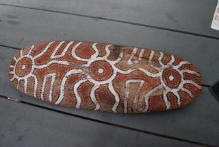 Western Desert Aboriginal Shield With Painted Decoration Papunya Old photo