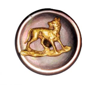 Sewing Button Wolf Dog Shell Brass Mother Pearl Hunting Antique photo