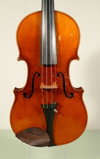 German Violin By Braun & Hauser,  Fine Craftmanship photo