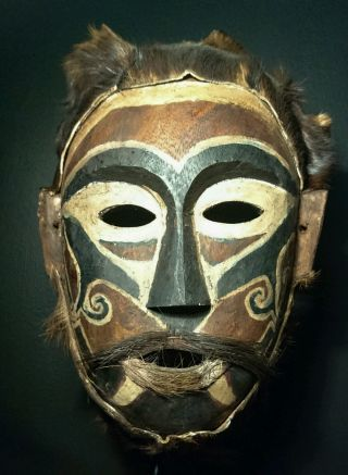 Dayak Ritual Mask.  Museum Quality photo