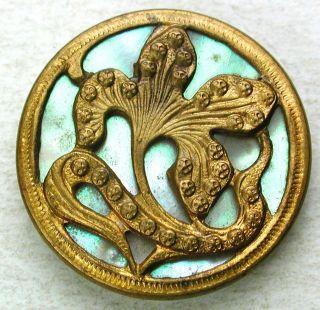 Antique Button Art Nouveau Brass Flower Over Iridescent Shell Liner - 7/8