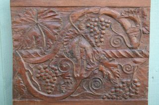 19thc Wooden Mahogany Relief Carved Panel: Grapes & Vine Leaves C1880s photo