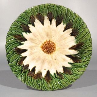 Vintage French Majolica Plate,  Daisy And Leaves photo
