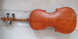 Antique Violin With Stamped & Spliced Neck - Figured Back - Ne With A Crown photo