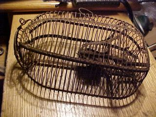 Antique Primitive Wire Mouse Trap 1800 ' S Early Live Catch,  Rounded Wire photo