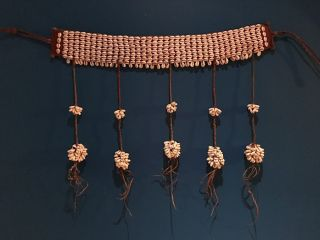 Asmat Primitive Tribal Cowry Shell Belt Papua Guinea photo