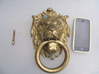 Large Vintage Cast Brass Lion Head Handle Loop Pull Old Antique Georgian Style photo
