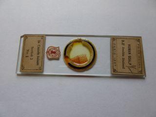 Antique Prize Medal Microscope Slide - Human Scalp In Canada Balsam - Cole Deun photo