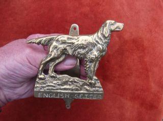 Large Heavy Vint.  Brass English Setter Door Knocker/show Breed Dog Door Striker/ photo