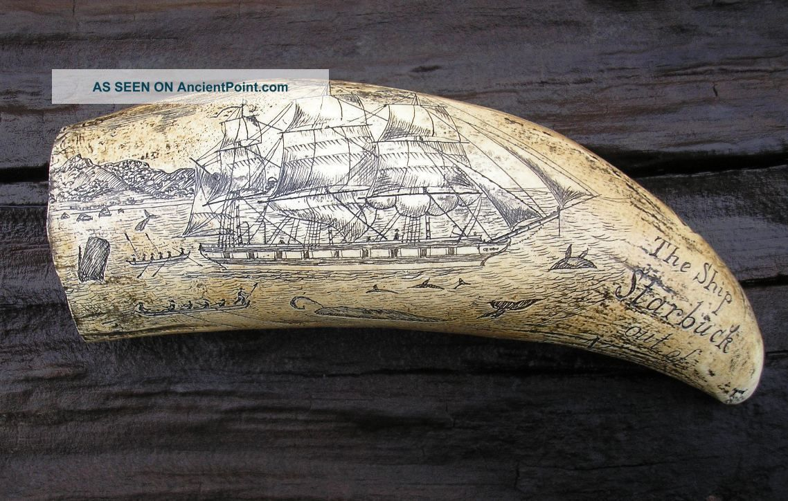 Scrimshaw Replica Resin Sperm Whale Tooth The Ship Starbuck Of Bedford Scrimshaws photo
