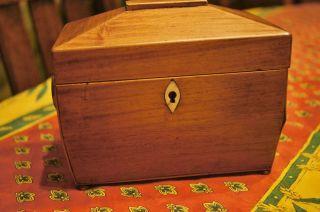 Antique 19th Century Tea Caddy Sarcophagus Shape Ivory Escutcheon 2 Compartments photo