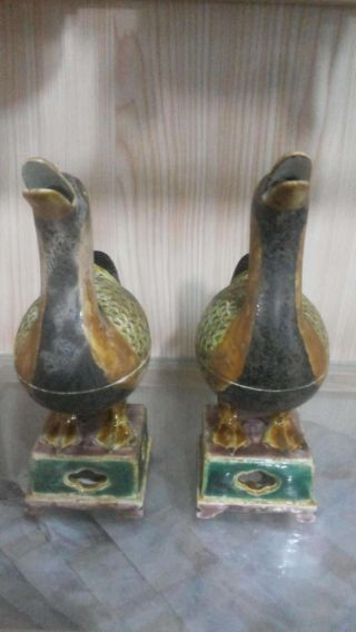 China ' S Ming Dynasty Chenghua Plain Tricolour Duck Aroma photo