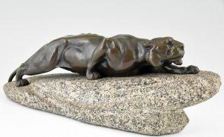 Antique Bronze Sculpture Panther L.  Bureau,  France,  1900,  L.  17