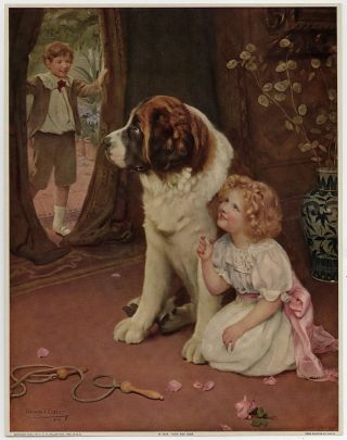 Antique Thos D Murphy Arthur John Elsley 1908 Victorian Art Print St Bernard Nr photo