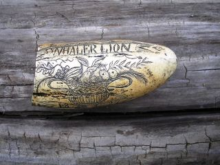 Scrimshaw Replica Resin Sperm Whale Tooth The Whaler Ship Lion photo