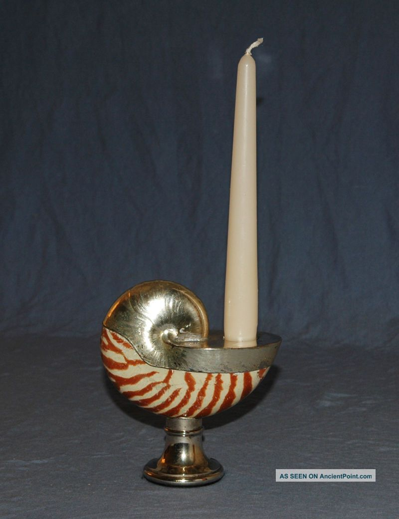 Real Nautilus Sea Shell & Silver Plate Candle Holder Other Antique Silverplate photo