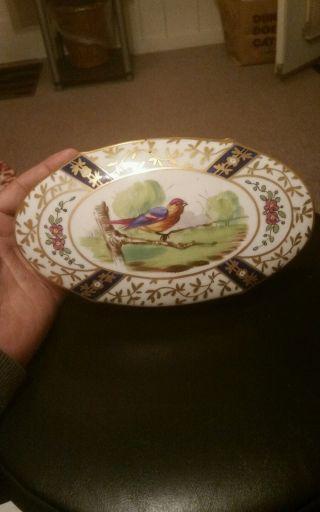 Antique Signed Trinket / Powder Box Sevres Porcelain Hand Painted Birds photo